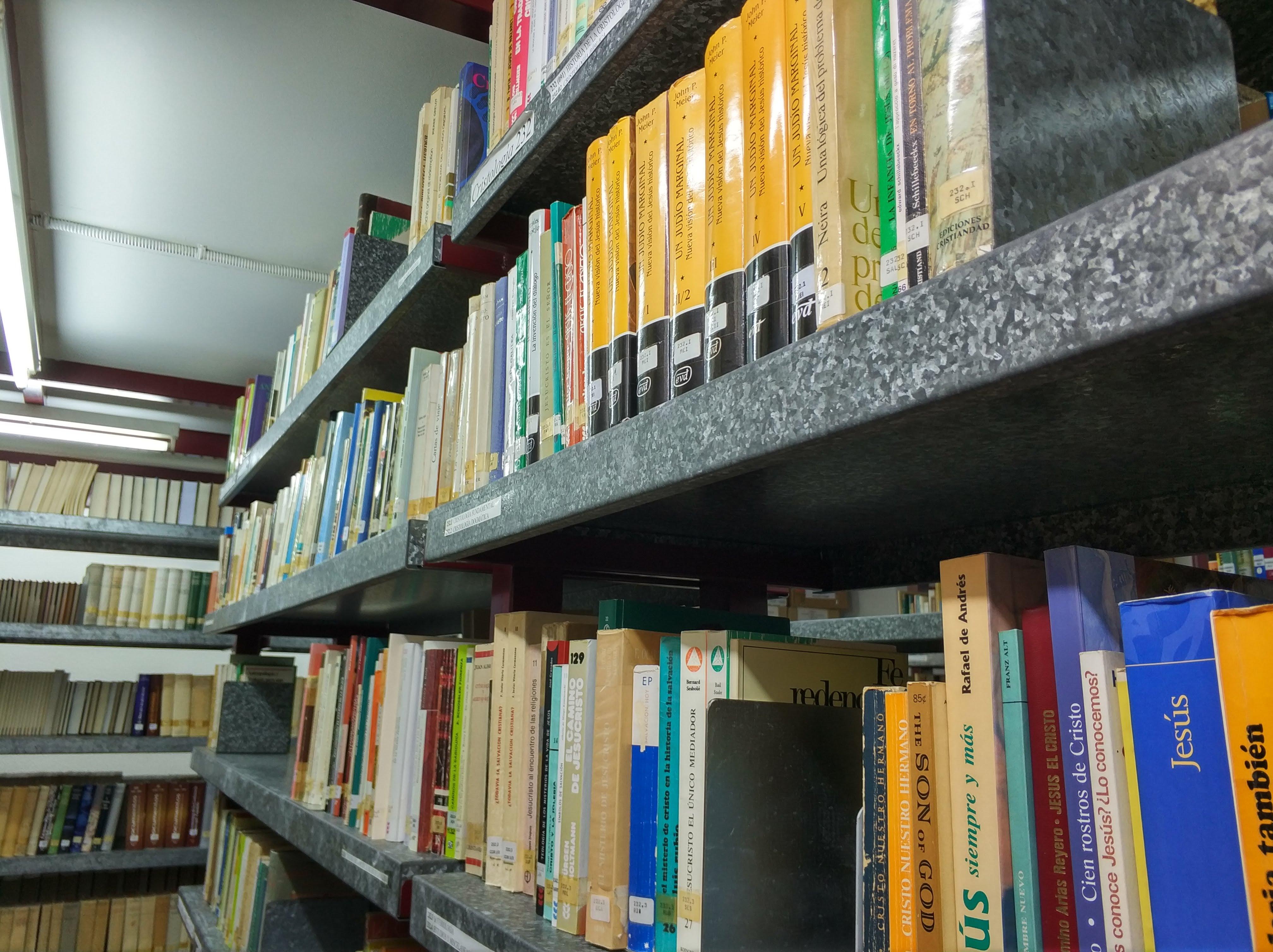 Biblioteca San Fulgencio